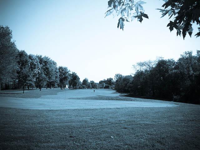 골프,golf