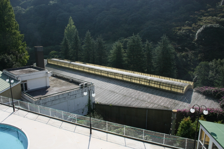 마쓰야마 호텔 오쿠도고(奧道後) 정글온천