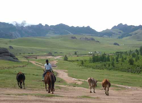 몽골의 예절과 풍습 20~24