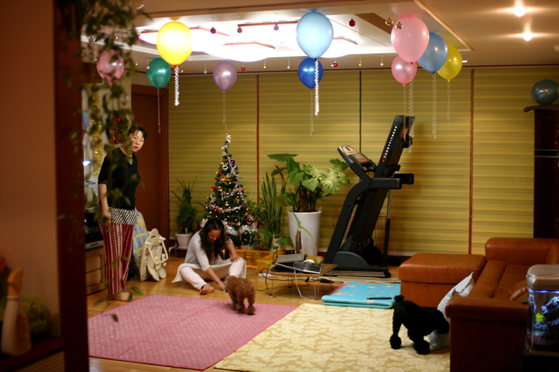 2008 크리스마스 장식과 롤브라인드 설치 (역시나 나의 작품(!) ㅎㅎ)